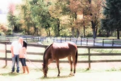 Stroudsmoor Country Inn - Stroudsburg - Poconos - Real Weddings - Newlyweds With Horse