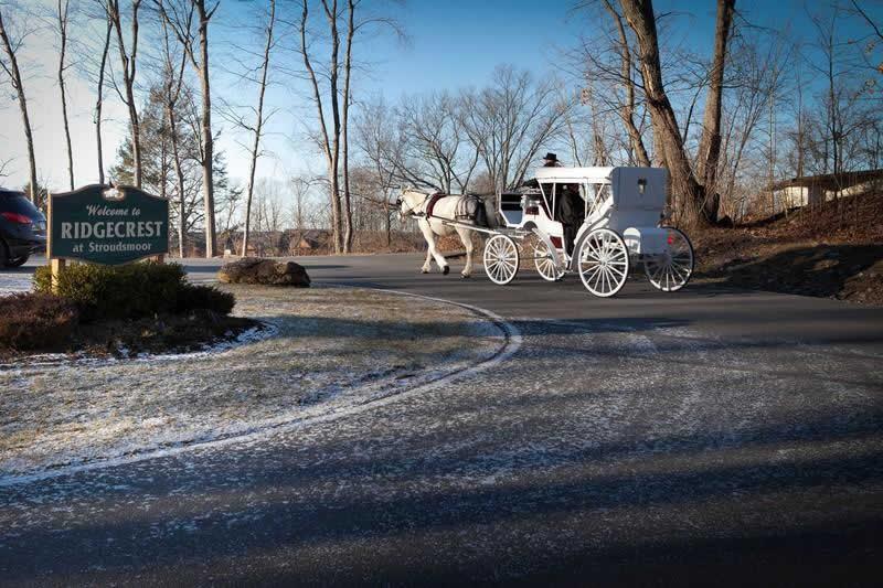 Stroudsmoor Country Inn - Stroudsburg - Poconos - Pocono Mountain Wedding - Wedding Horse And Buggy