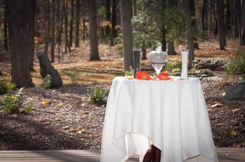 Stroudsmoor Country Inn - Stroudsburg - Poconos - Woodlands Outdoor Wedding - Outdoor Table Setting