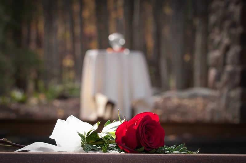 Stroudsmoor Country Inn - Stroudsburg - Poconos - Woodlands Outdoor Wedding - Single Rose